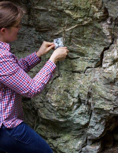 Geologie Taunus Goldgrubenfelsen Sonja Philipp